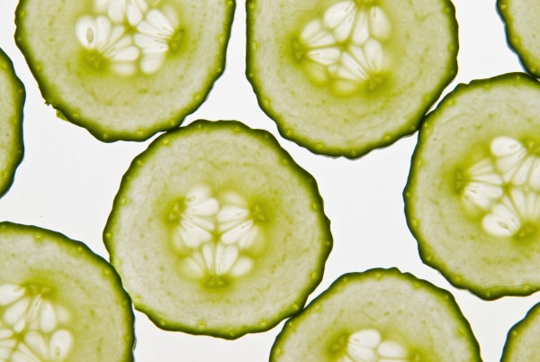 Turkey Cucumber Pita