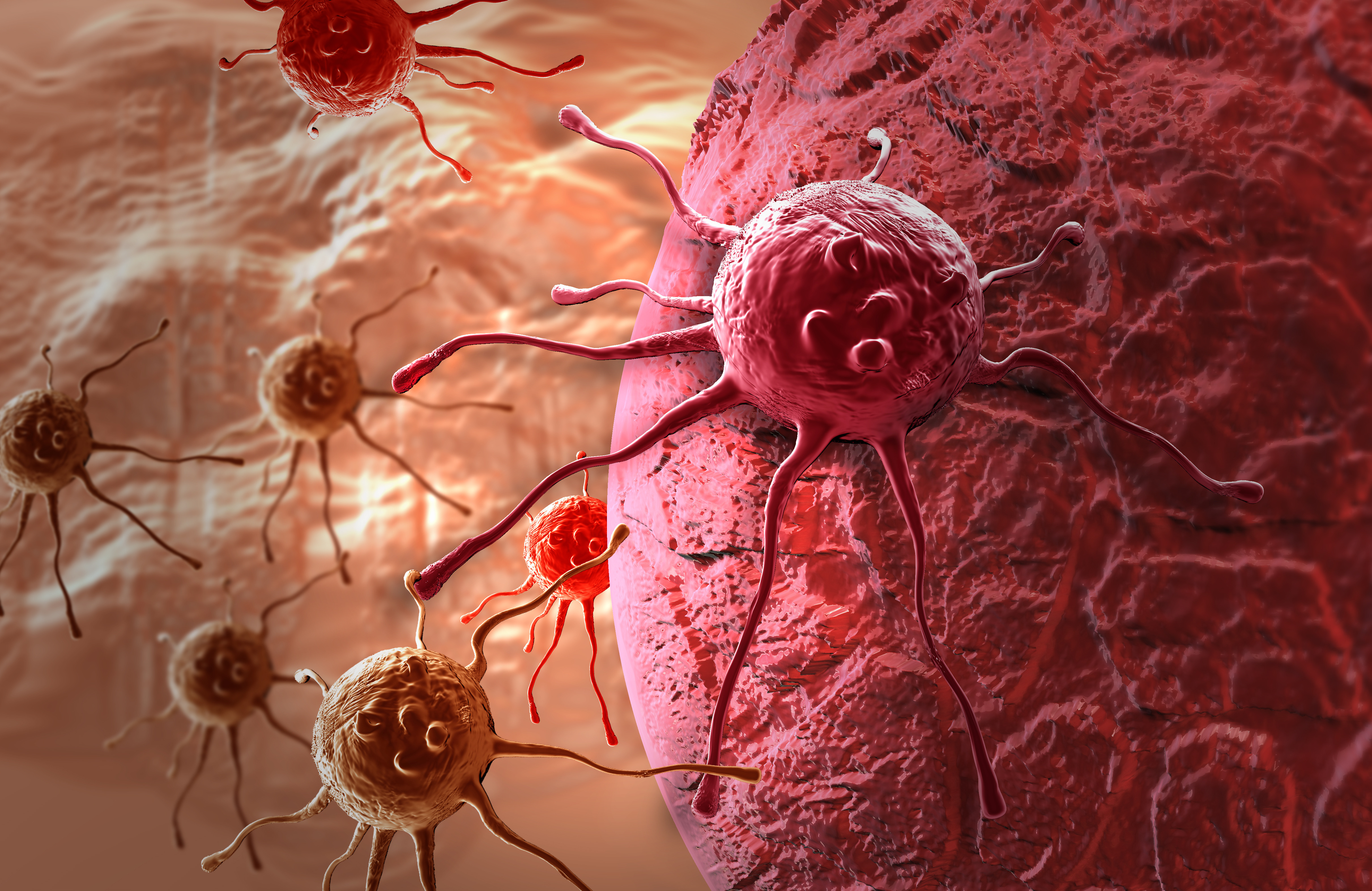 5 cancer causing foods