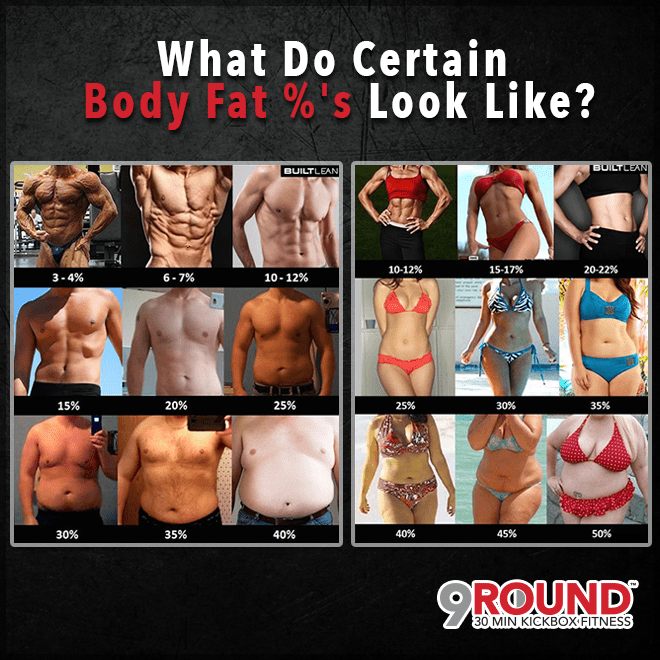 What Do Body Fat Look Like